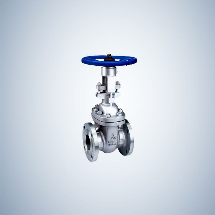 Bolted Bonnet Cast Steel Gate Valve