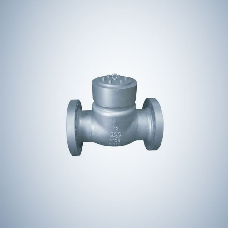 Pressure Sealing Flanged Check Valve