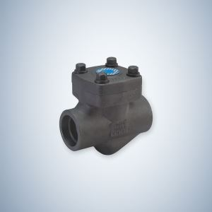 Bonney Forge Check Valve Forged Check Valve