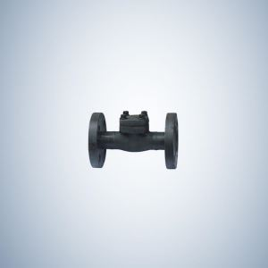 Forged Check Valve Flange Ends